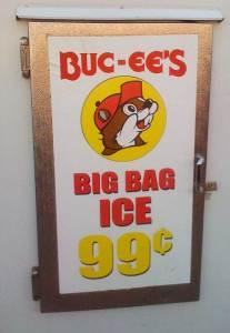 194-buc-cees