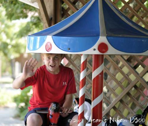 Sometimes an animal, the #2 son has fun on a very small merry-go-round.