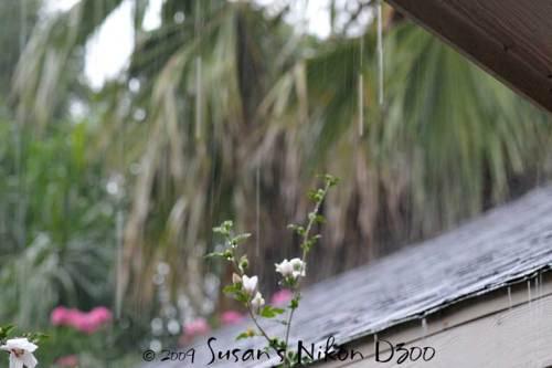Rain at a slower shutter speed