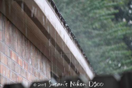 Rain again at a slower shutter speed