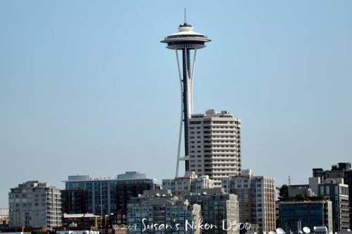The Space Needle from the ferry
