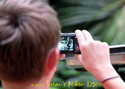 The #2 son takes a photo in a tropical bird exhibit.