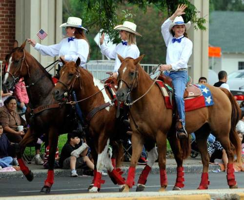 There were plenty of horses in the parade.