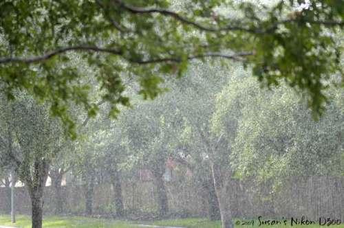 Pointillistic rain (f/2.8, 1/500th, ISO 200)