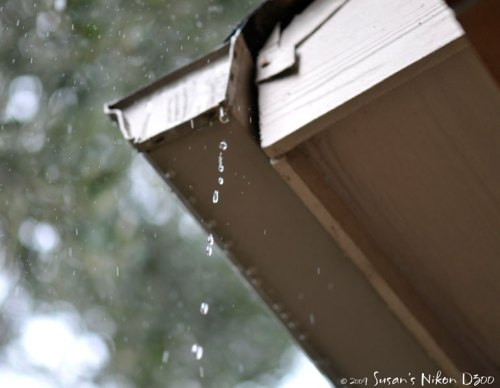 Rain drips from the gutter. (f/3, 1/500th, ISO 200)