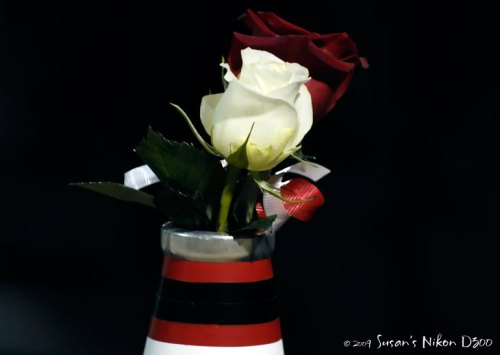 Roses use a cheerleader's megaphone as a handy vase.