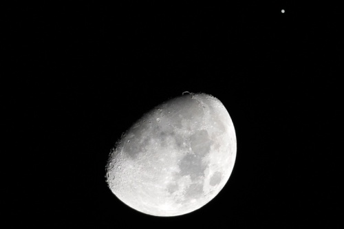 Jupiter looks tiny compared to the moon last night.