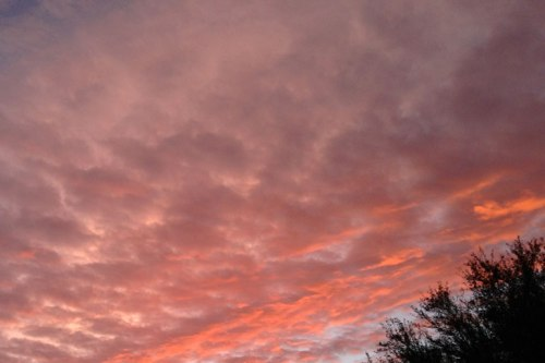 The clouds are pretty as a pink and red picture.