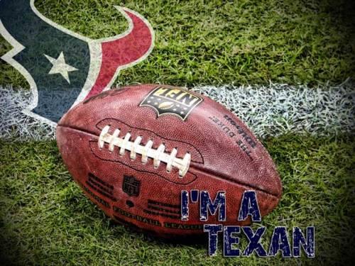 first-i'm-a-texan-art