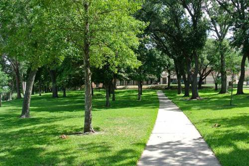 The campus looked green and lush.