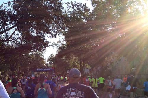 Sunbeams light the way, as the marathon and half marathon split at mile eight.